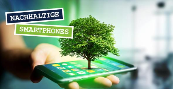 Eine Hand hält ein Smartphone mit einem Baum.