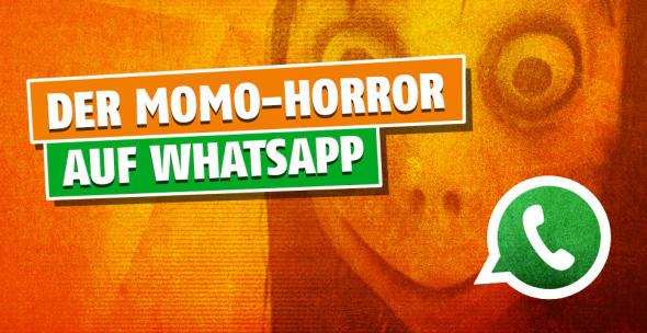 Titelbild WhatsApp Momo