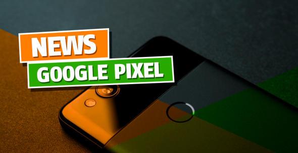 Die Rückseite eines Google-Pixel-Handys.