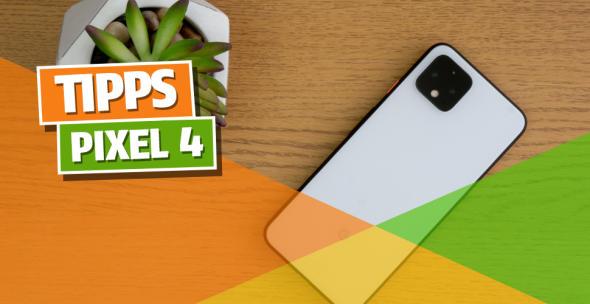 Das Google Pixel 4 liegt auf einem Tisch neben einer Pflanze.