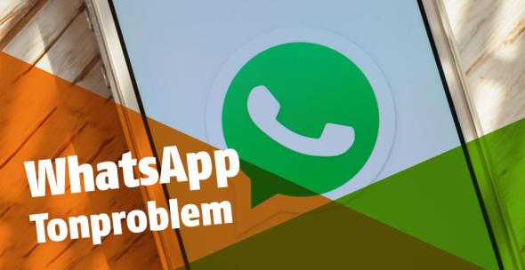 Auf einem Smartphone ist das WhatsApp Logo abgebildet.