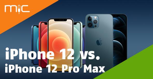 Das iPhone 12 in verschiedenen Farbvarianten neben dem iPhone 12 Pro Max