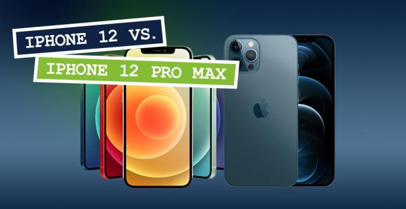 Das iPhone 12 in den unterschiedlichen Farbvarianten und das iPhone 12 Pro Max nebeneinander.