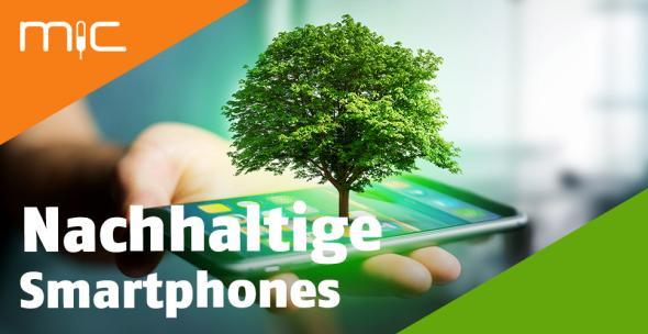 Ein Smartphone, aus dem ein Baum wächst.